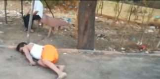 labourer walking from mumbai to nagpur died on road