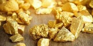 jamshedpur 250 kg gold reserves found in east singhbhum