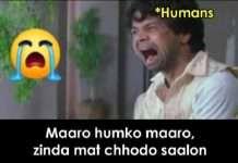 viral memes on cyclone