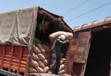 onion export to bangladesh