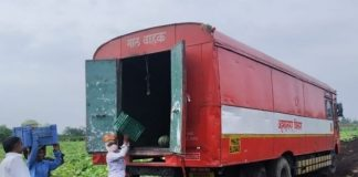 st freight services