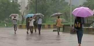 Monsoon 2021: Pre-monsoon rain showers with gusty winds in the next five days in maharashtra