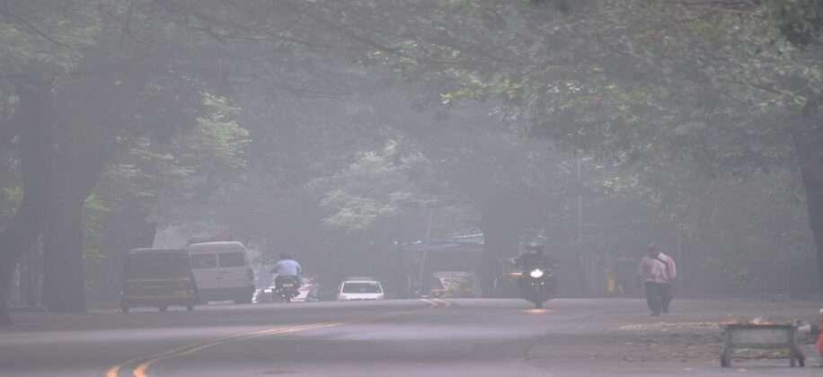 Thane Fog