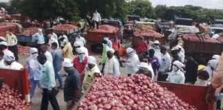 Onion Market