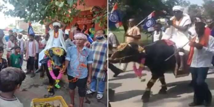 Bihar Election leader arrived on the buffalo to file his nomination papers for the bihar assembly elections