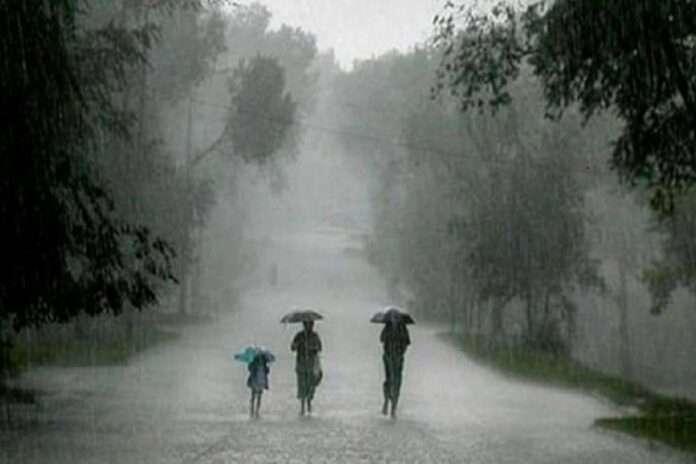 rain update solapur heavy rainfall big loss in barshi pandharpur rain water