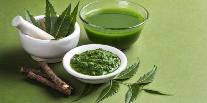 Health Benefits of Neem Tree