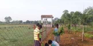 sachin tendulkar statue in chhattisgarh