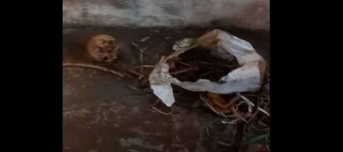 human skeleton found in water tank