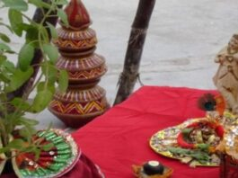 The myth behind the Tulsi marriage