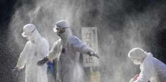 Japan's worst bird flu outbreak on record spreads to 10th prefecture