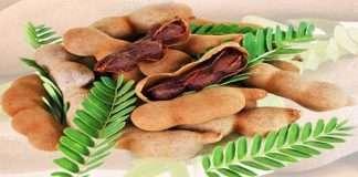 benefits of tamarind leaves