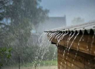 meteorological department has forecast unseasonal rains in the state