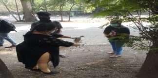 death of herons in Thane is not due to bird flu - Sunil Kedar