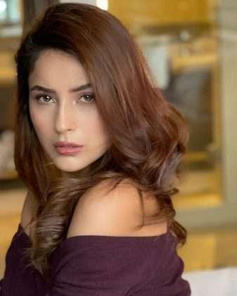 bigg boss fem actress shehnaaz gill share new photo on instagram