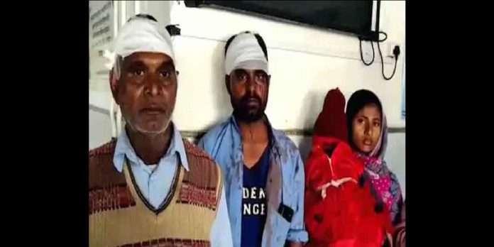 haryana fight over dog nine people injured
