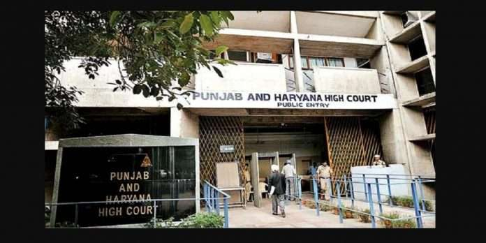 second wife right to pension and other benefits says punjab and haryana court