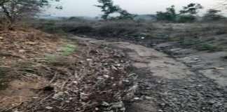 Close the Bhatsa right canal; Demand of former Shiv Sena MLA Pandurang Barora
