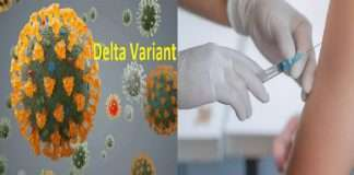 21 Delta Plus variant patients found in Maharashtra did not get corona vaccine - health department