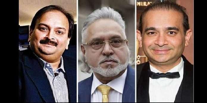 ED transfers banks and govt ₹9,371 crore assets seized from Vijay Mallya, Nirav Modi, Mehul Choksi