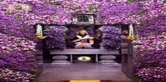 Photo: Pandharpur Vitthal Rukmini temple decorated with attractive flowers on the occasion of Nirjala Ekadashi