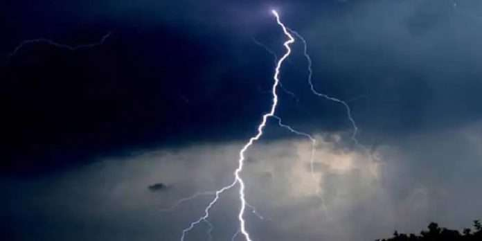 one killed and three kids injured by lightning as they climbed a tree in search of a mobile network at palghar