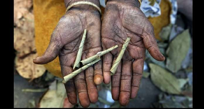 2 lakh 56 thousand Beedi workers struggle to survive amid Covid crisis in maharshtra