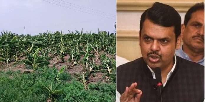 devendra fadnavis slams thackeray government on relief to farmers