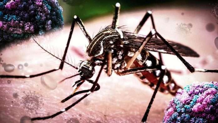 first case of Zika virus reported in Maharashtra