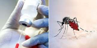 BioNTech to develop first malaria vaccine