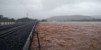 Maharashtra Flood: 140 bridges under water in the state,Officials instructed to inspect roads and bridges in the state