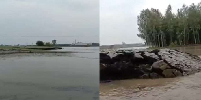 land came out of the water viral video in hariyana