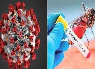 how to differentiate between coronavirus symptoms dengue and malaria