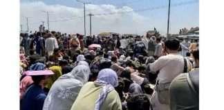 Seven Afghans killed in Kabul airport stampede