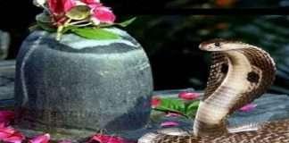 Worship the snake on Nagpanchami? auspicious moment of Nagpanchami and the pooja ritual