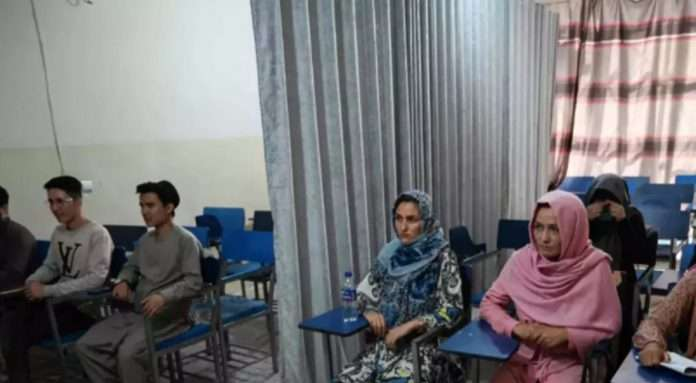 taliban allow female students for study in afghanistan university