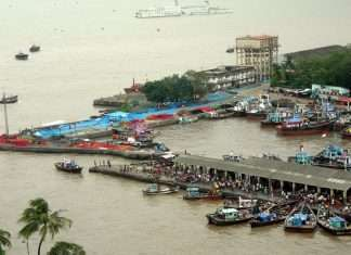 Confiscation on Sassoon Docks Fisheries Institute