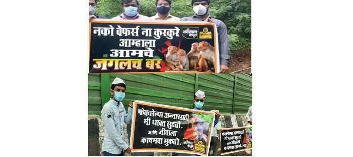 Chain agitation on Mumbai-Goa highway for protection of wildlife