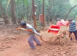 Bad road conditions affect employment of horse breeders and rickshaw pullers in Matheran