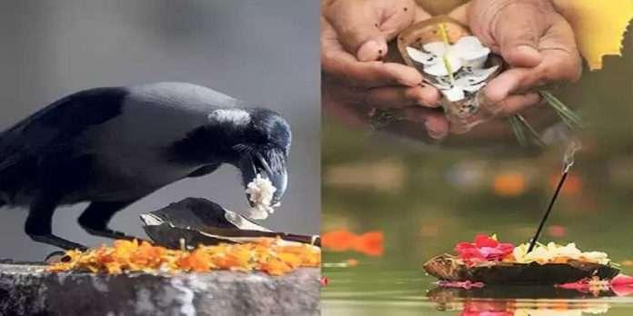 Sarva Pitru Amavasya 2021 special yoga After 11 years