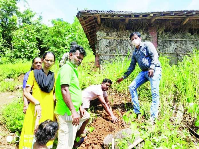 four lakh bamboos planted in raigad to prevent soil erosion